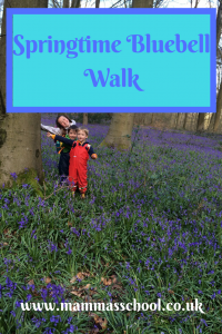 Springtime bluebell walk, bluebells, spring, walking, www.mammasschool.co.uk