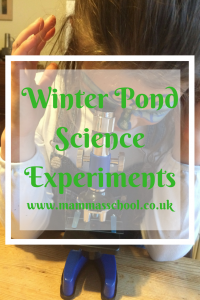 Winter Pond Science experiements, pond, pondlife, science, nature, pond life, www.mammasschool.co.uk