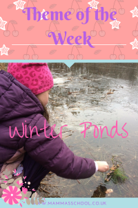 Winter ponds, ponds, pond life, winter pond life, nature curriculum, www.mammasschool.co.uk