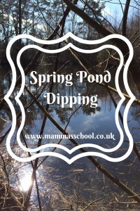 Spring pond dipping, pond study, frogs, pond life, spring www.mammasschool.co.uk