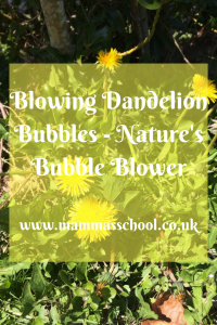 Blowing dandelion bubbles - Nature's bubble blower, nature bubbles www.mammasschool.co.uk