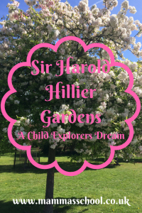 Sir Harold Hillier Gardens - child explorers dream nature play blossom flowers trees www.mammasschool.co.uk