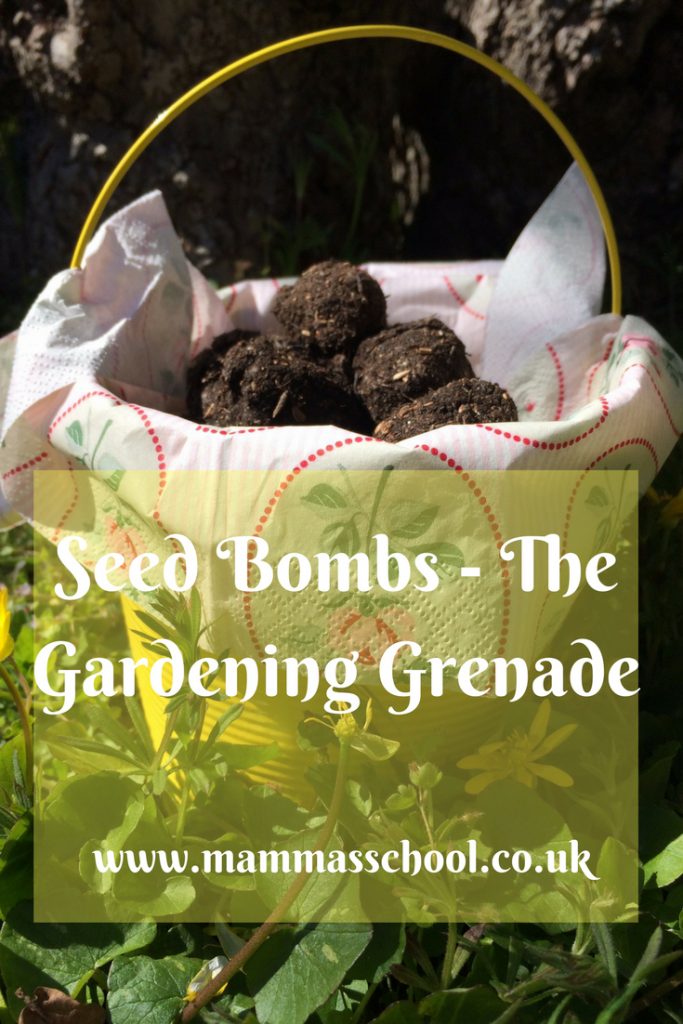 Seed Bombs-The gardening grenade, children gardening, gardening, seeds, wildflowers www.mammasschool.co.uk