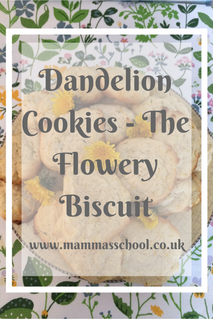 Dandelion Cookies, foraged food, cooking with dandelions, dandelion food, www.mammasschool.co.uk