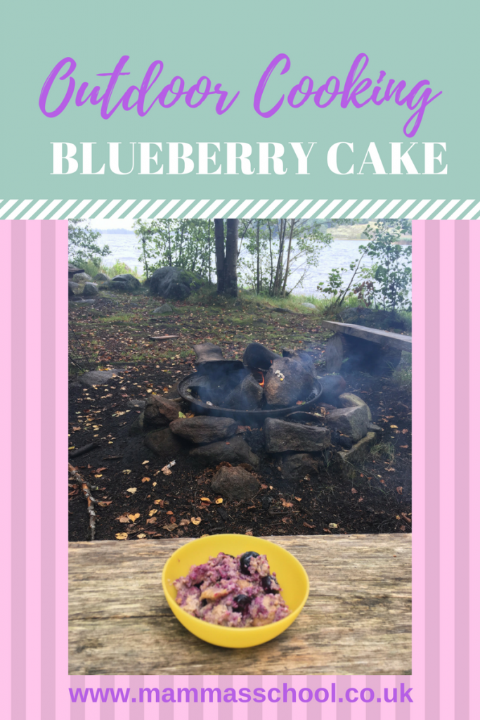 Campfire blueberry cake, blueberry cake, outdoor blueberry cake, foraged blueberry cake, www.mammasschool.co.uk