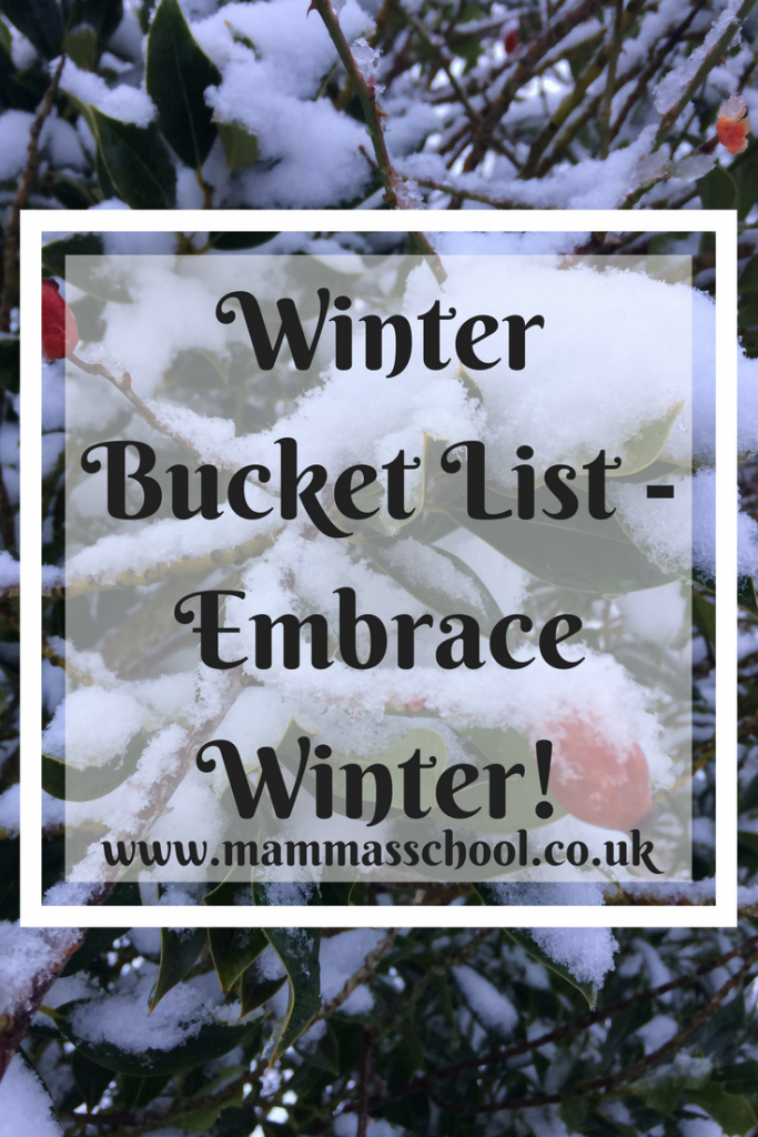Winter bucket list - Embrace winter, winter, winter fun, winter activities, snow fun, snow activities, winter outdoor fun, outdoor fun, www.mammasschool.co.uk