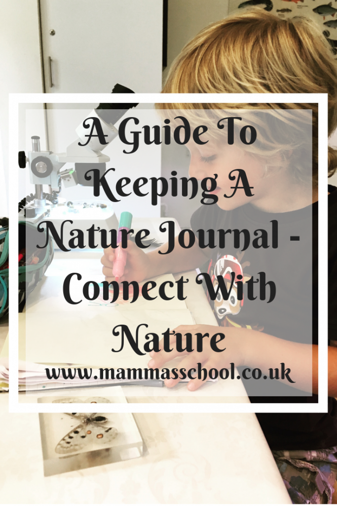 A Guide To Keeping A Nature Journal - Connect with Nature, Nature Journal, nature journaling, nature based learning, nature learning, www.mammasschool.co.uk