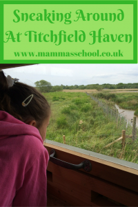 Sneaking around Titchfield Haven, bird watching www.mammasschool.co.uk