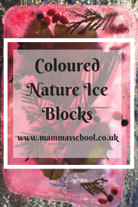 Winter coloured nature ice blocks, winter craft, ice craft, coloured ice, www.mammasschool.co.uk