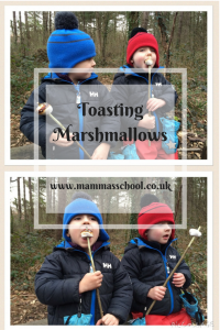 toasting marshmallows, campfire marshmallows, outdoor food, campfire food www.mammasschool.co.uk