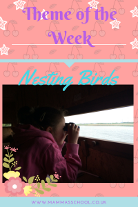 Nature Curriculum week 24 - Nesting Birds bird watching journaling www.mammasschool.co.uk
