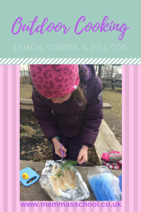 Outdoor cooking lemon ginger and dill cod parcels tasty outdoor treats www.mammasschool.co.uk
