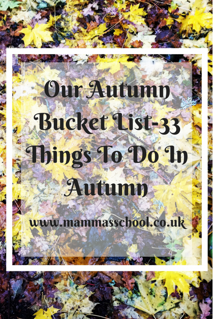 Our autumn bucket list, autumn, things to do in autumn, cosy autumn, www.mammasschool.co.uk