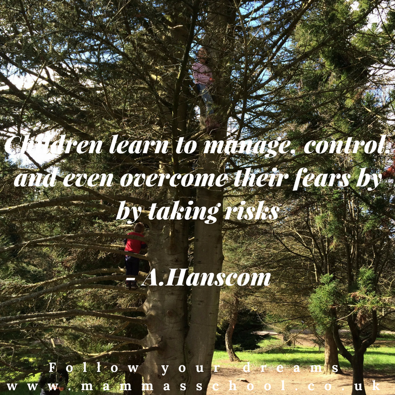 Inspiration wednesday-let children take a risk, risk taking, managing risk, risks, outdoor play, nature play, quote, inspirational quote, motivational quote, quotes, www.mammasschool.co.uk