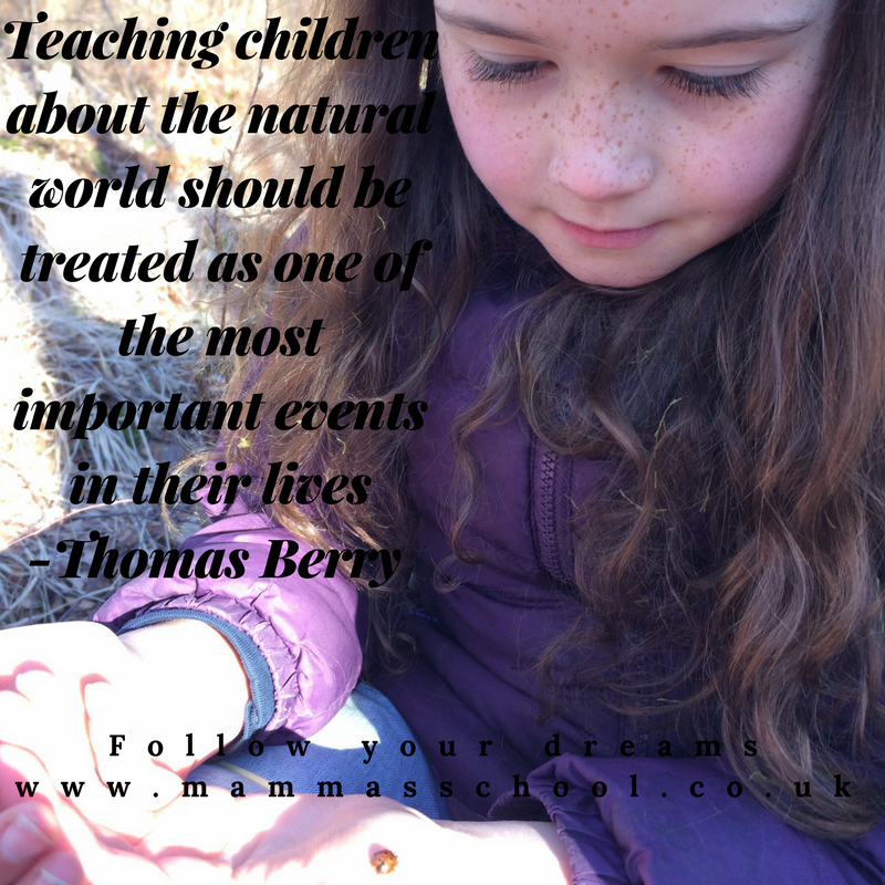 Inspiration Quote, Natural World, Teaching children, children, nature, quotes, quotes, www.mammasschool.co.uk