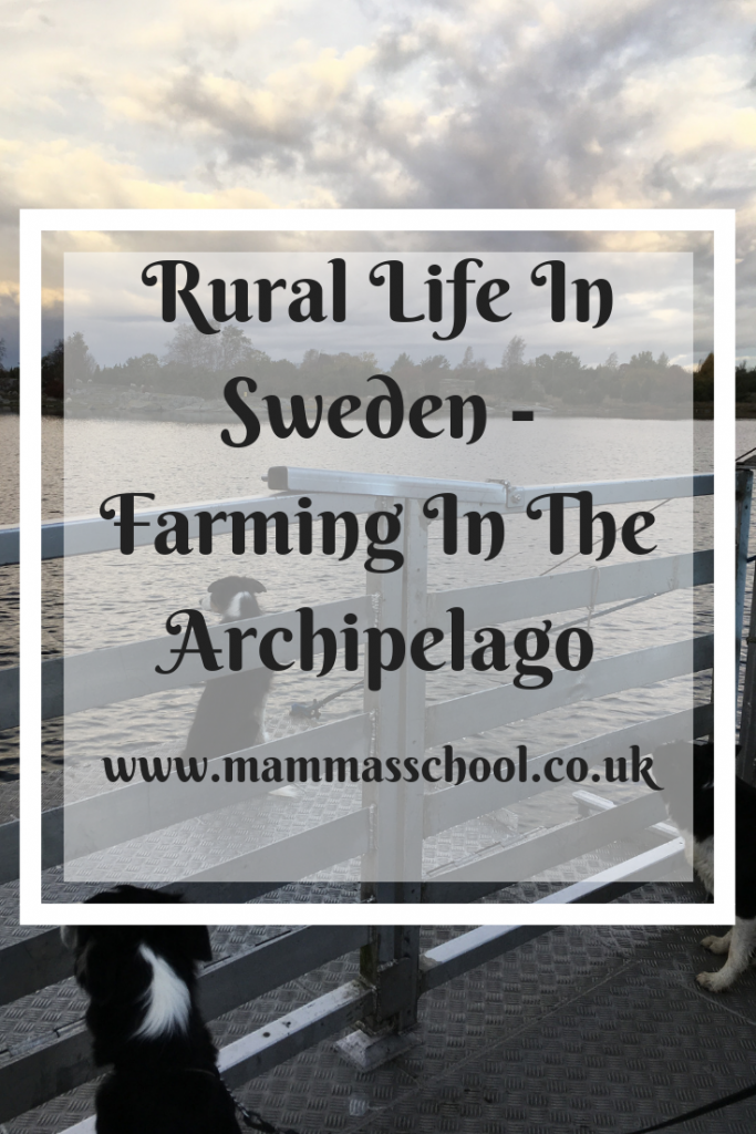 Rural Life In Sweden - Farming In The Archipelago, Farming in Sweden, Swedish farming, living in Sweden, www.mammasschool.co.uk