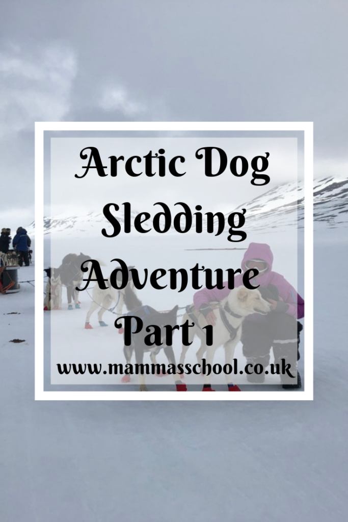 Arctic Dog Sledding adventure part 1, outdoor challenges, Arctic adventure, adventures, outdoor adventures, Arctic, dog sledding, www.mammasschool.co.uk